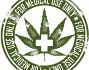 The Use Of Marijuana In The Clinic
