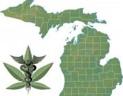 Steps In Opening A Marijuana Dispensary in Michigan